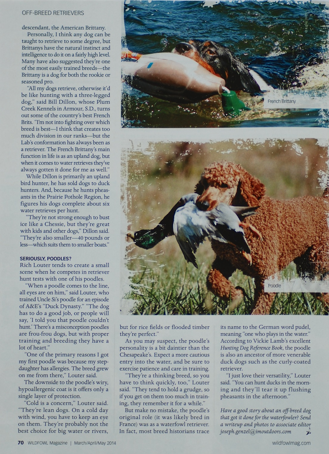 March-April-May 2014 WILDFOWL Magazine